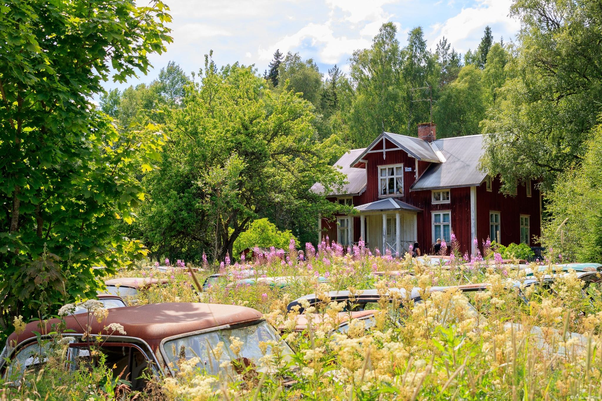 BåstnäsBilkyrkogård-170723-00