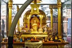 Gangaramaya-Temple_02