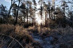 Storsjön-2017-01-06-I