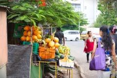 Negombo_23