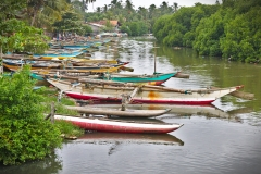 Negombo_31